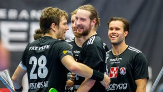 Hovlund och Berglund stod för mest poäng i kvällens match.